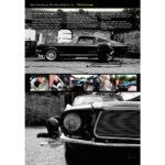 PRO Detailer Magazine – Nr. 3-2016 – PVD Showcase